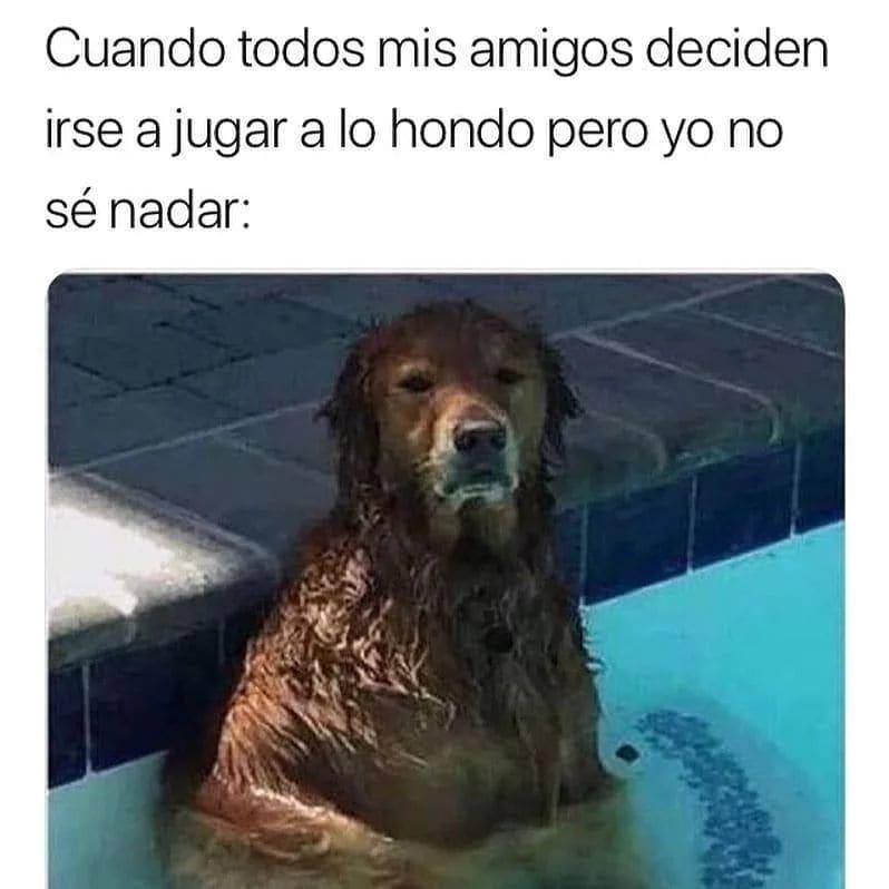 Cuando todos mis amigos deciden irse a jugar a lo hondo pero yo no sé nadar.
