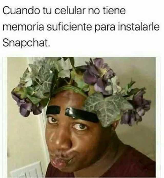 Cuando tu celular no tiene memoria suficiente para instalarle Snapchat.