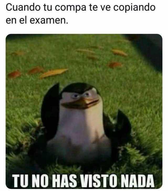 Cuando tu compa te ve copiando en el examen.  Tún no has visto nada.