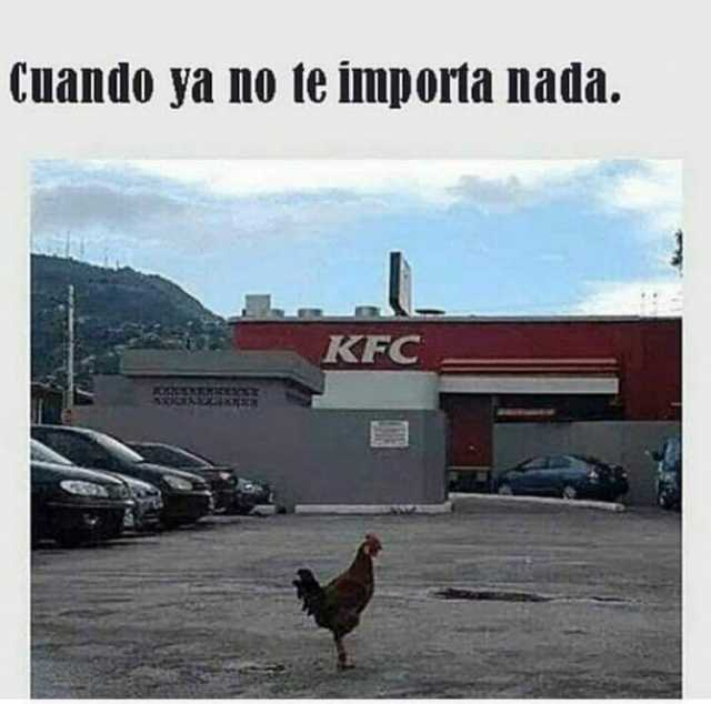 Cuando ya no le importa nada. KFC.