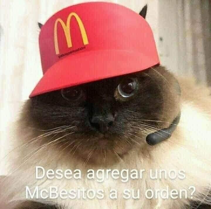 Desea agregar unos McBesitos a su orden?