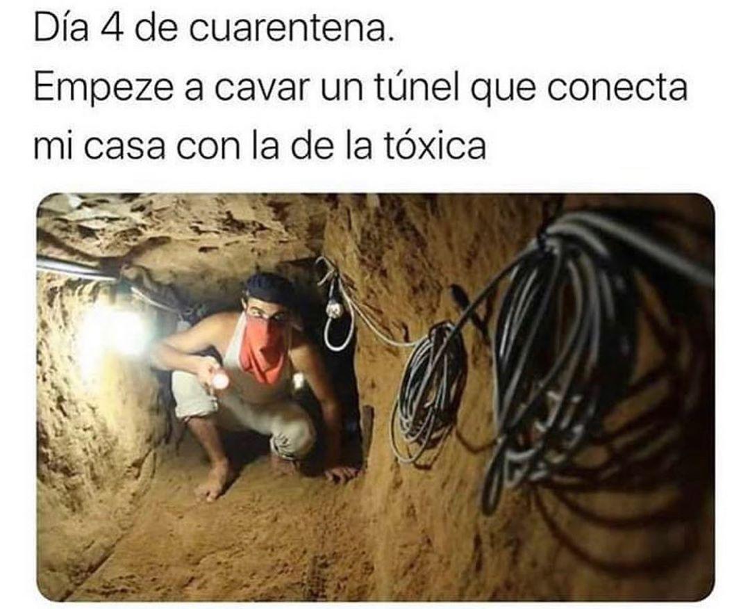 Día 4 de cuarentena.  Empece a cavar un túnel que conecta mi casa con la de la tóxica.