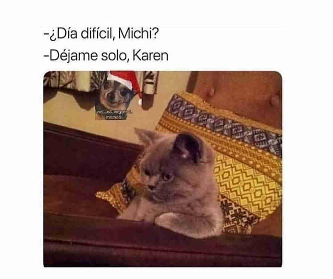 ¿Día difícil, Michi?  Déjame solo, Karen.