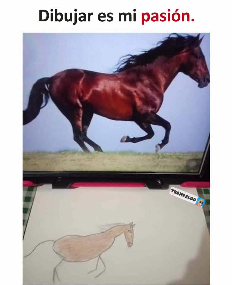 Dibujar es mi pasión.