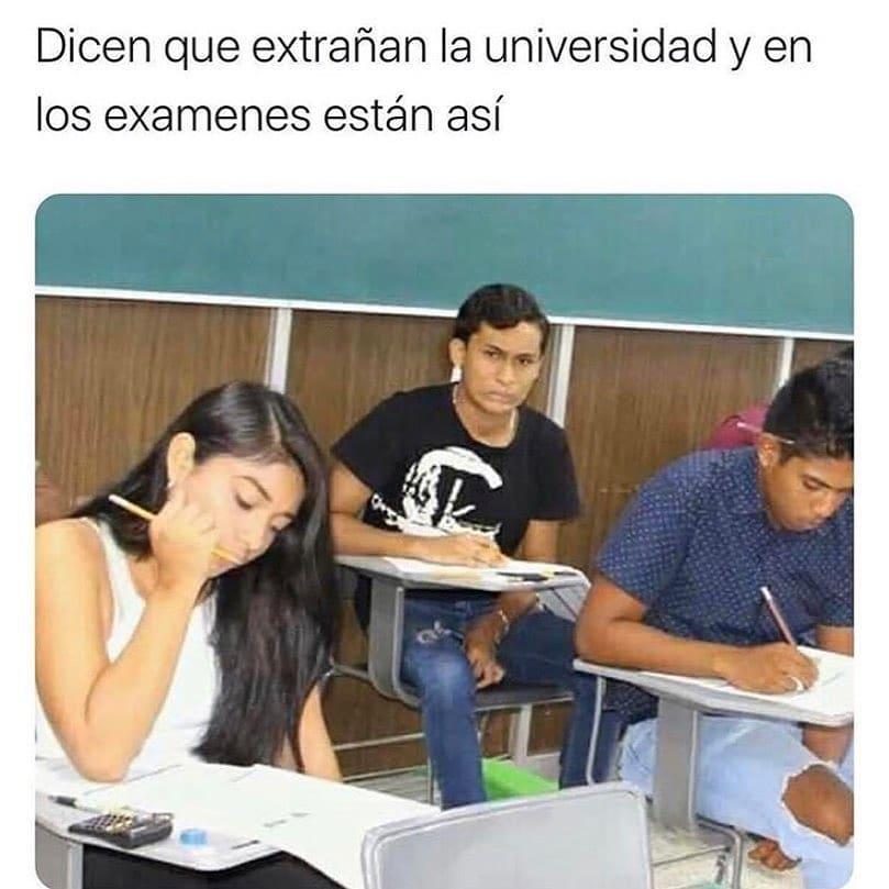 Dicen que extrañan la universidad y en los exámenes están así.