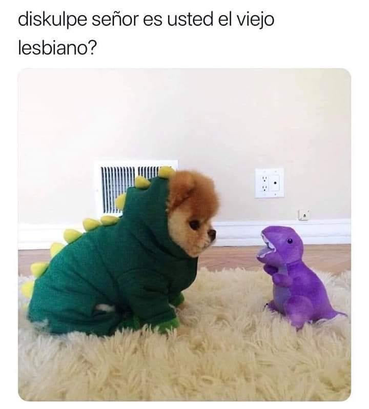 Diskulpe señor es usted el viejo lesbiano?