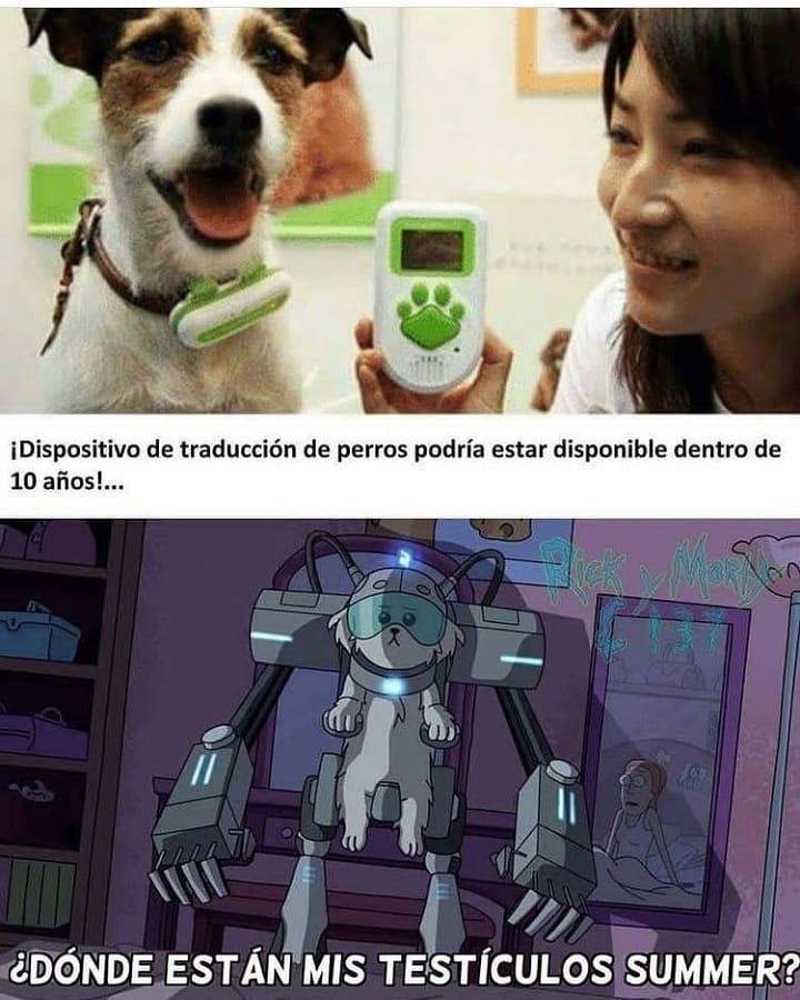 ¡Dispositivo de traducción de perros podría estar disponible dentro de 10 años!... ¿Dónde están mis testículos summer?