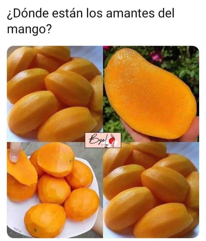 ¿Dónde están los amantes del mango?