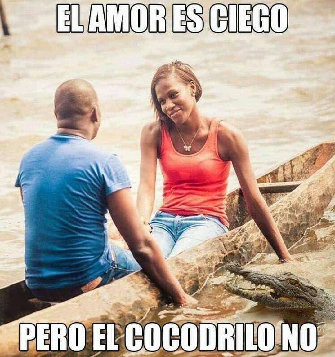 El amor es ciego pero el cocodrilo no.