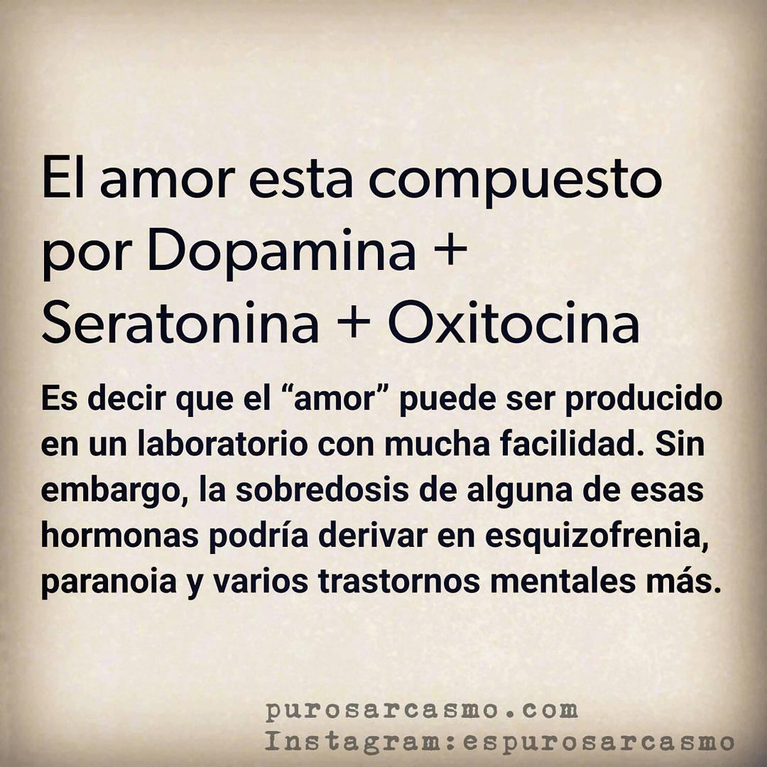 """El amor esta compuesto por Dopamina + Seratonina + Oxitocina.  Es decir que el """"amor"""" puede ser producido en un laboratorio con mucha facilidad. Sin embargo, la sobredosis de alguna de esas hormonas podría derivar en esquizofrenia, paranoia y varios trastornos mentales más."""
