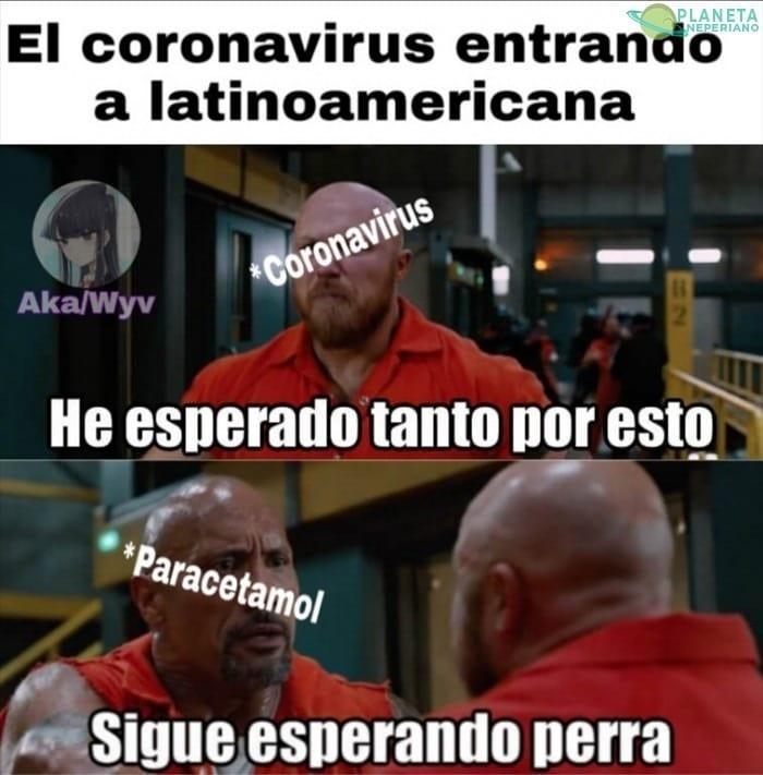 El coronavirus entran a latinoamericana.  He esperado tanto por esto.  Paracetamol: Sigue esperando perra.