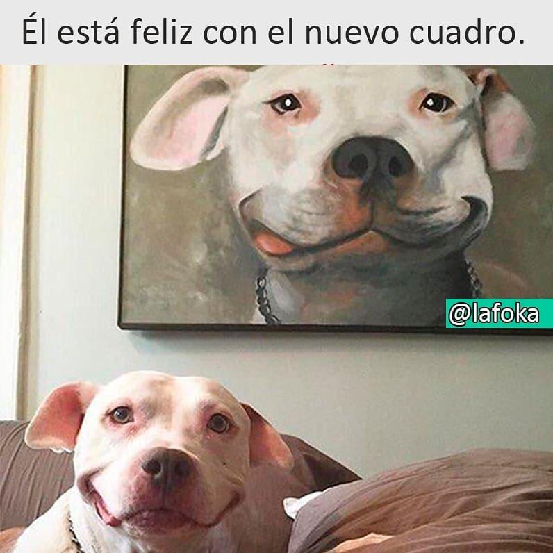 Él está feliz con el nuevo cuadro.