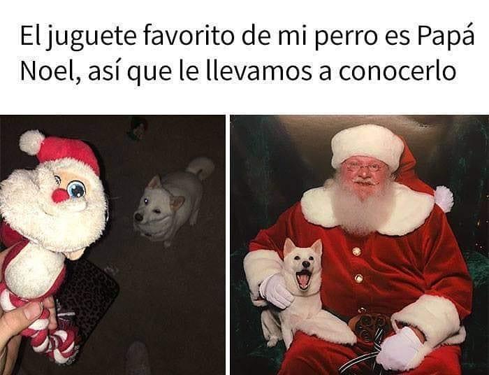 El juguete favorito de mi perro es Papá Noel, así que le llevamos a conocerlo.