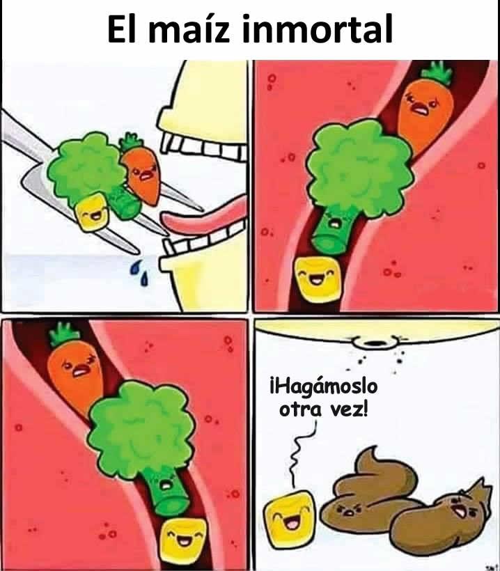 El maíz inmortal.  ¡Hagámoslo otra vez!