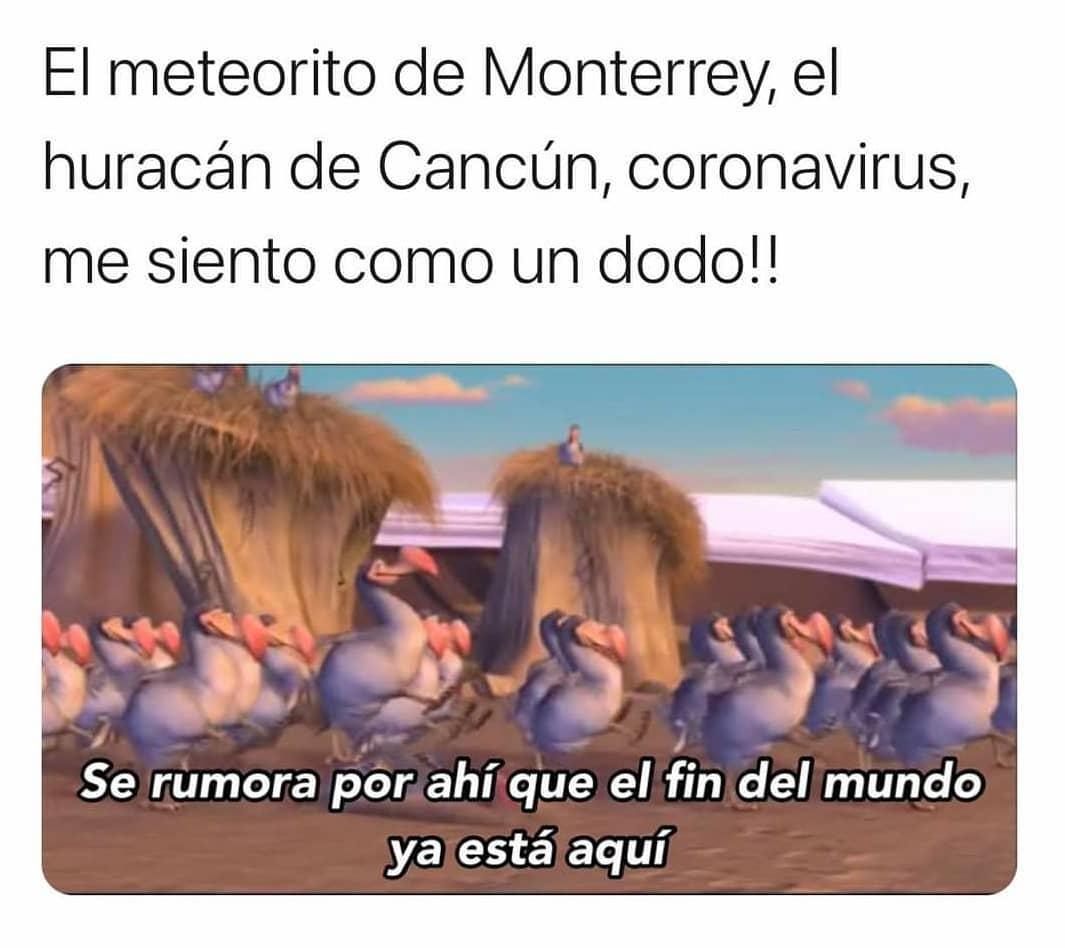 El meteorito de Monterrey, el huracán de Cancún, coronavirus, me siento como un dodo!!  Se rumora por ahí que el fin del mundo ya está aquí.