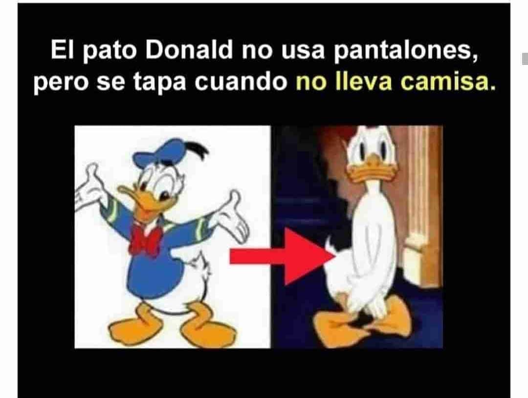 El pato Donald no usa pantalones, pero se tapa cuando no lleva camisa.