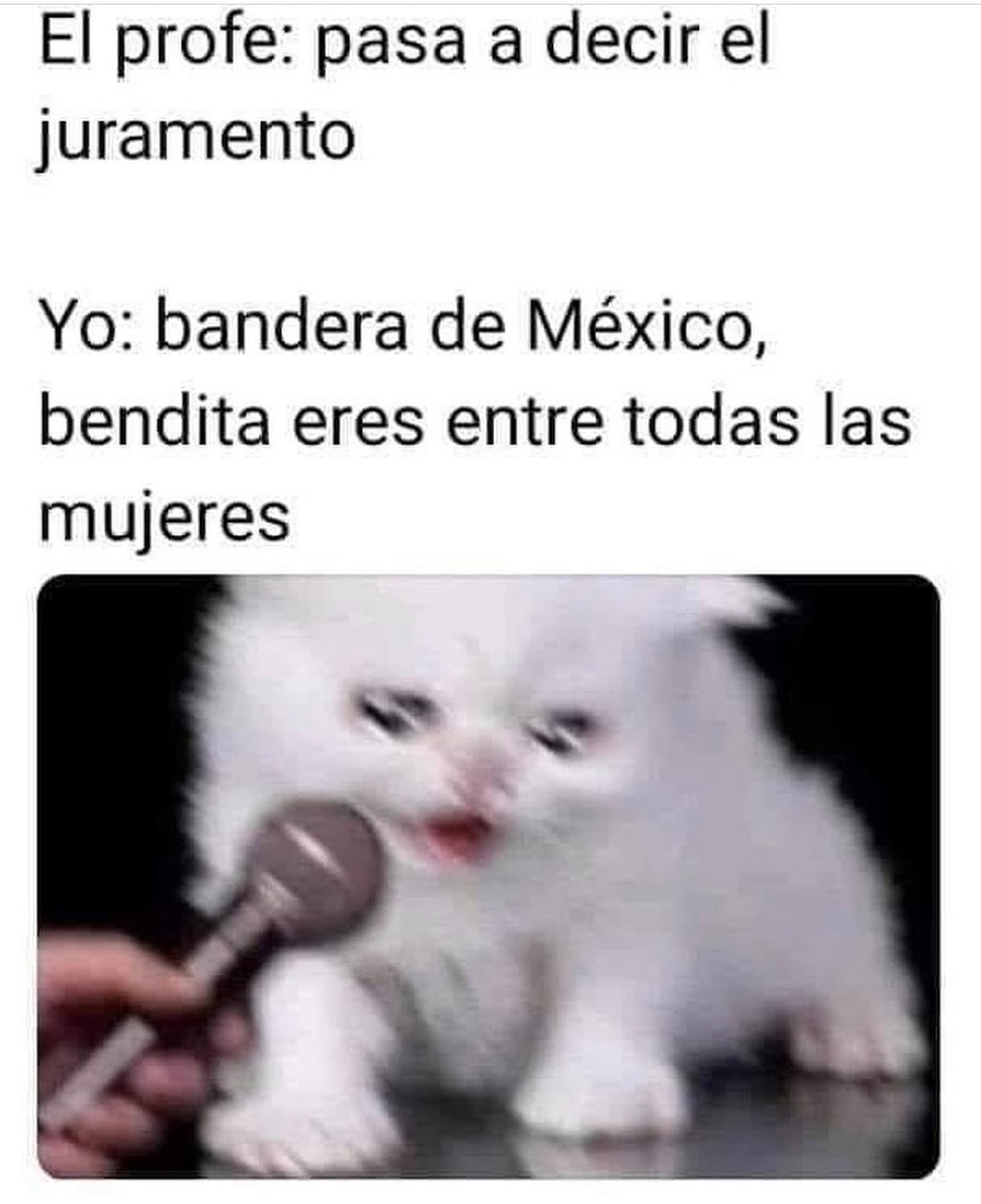El profe: Pasa a decir el juramento.  Yo: Bandera de México, bendita eres entre todas las mujeres.