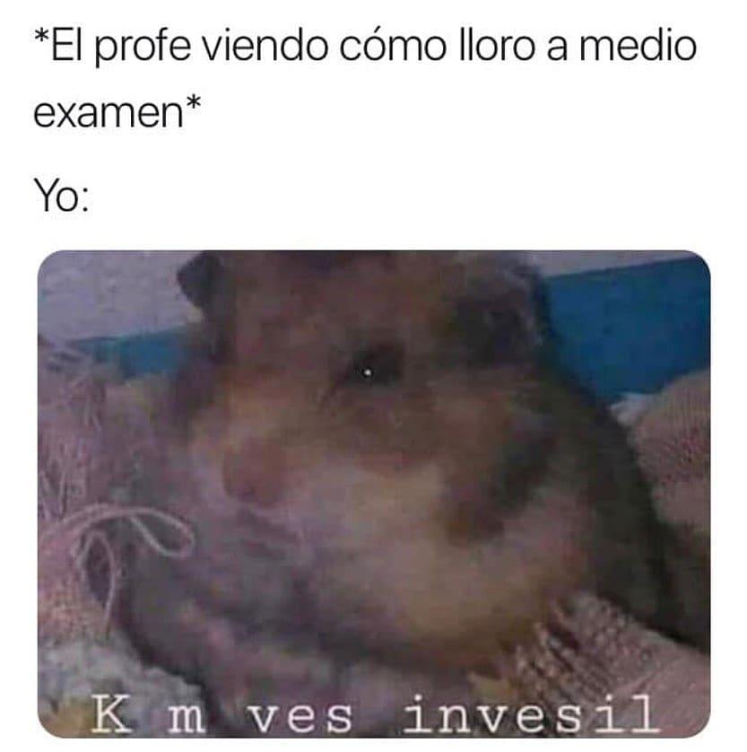 *El profe viendo cómo lloro a medio examen*.  Yo: K m ves invesil.