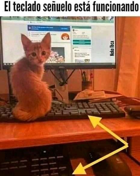 El teclado señuelo está funcionando.