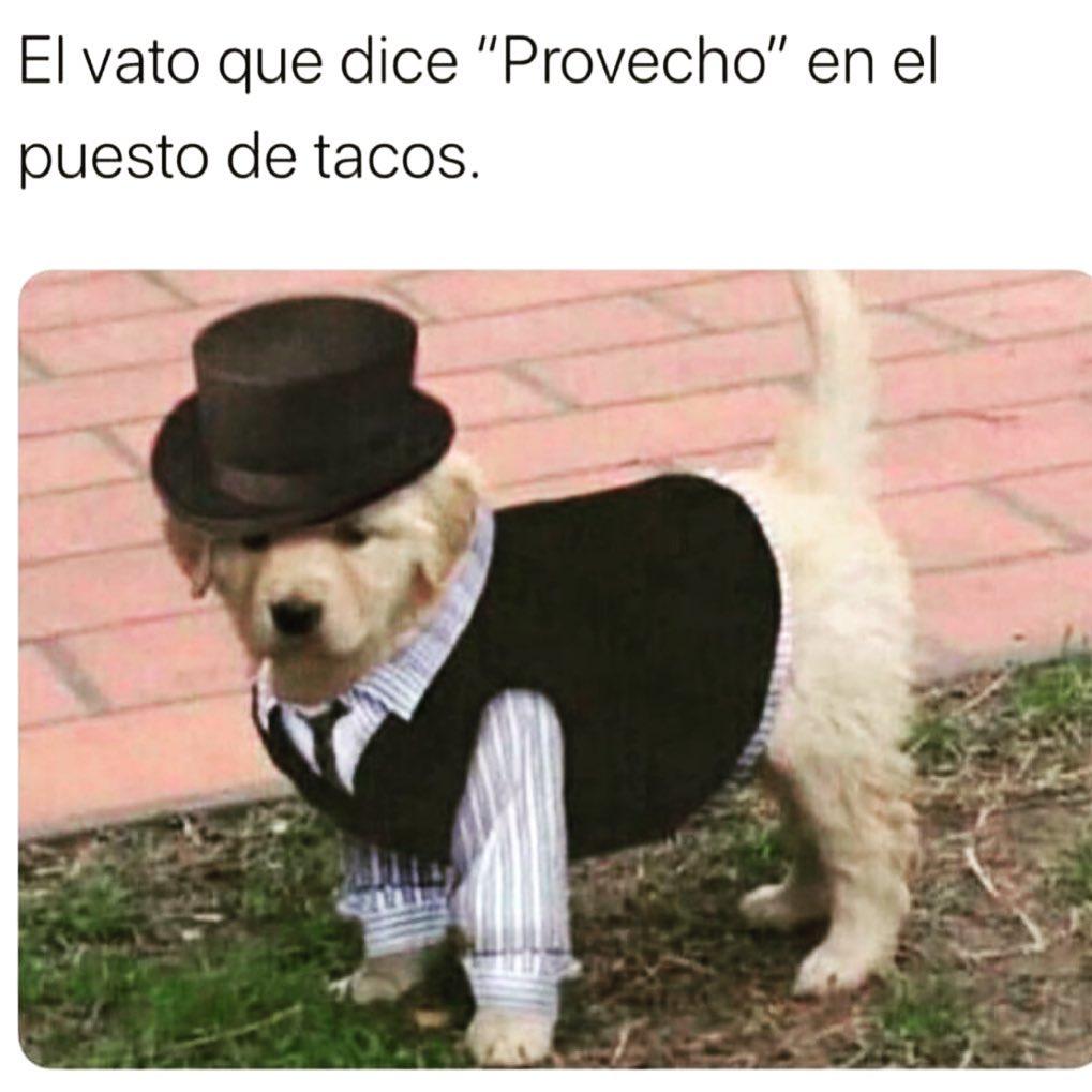 """El vato que dice """"Provecho"""" en el puesto de tacos."""