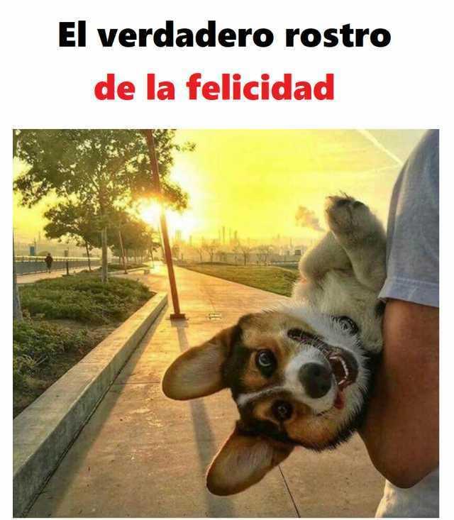El verdadero rostro de la felicidad.