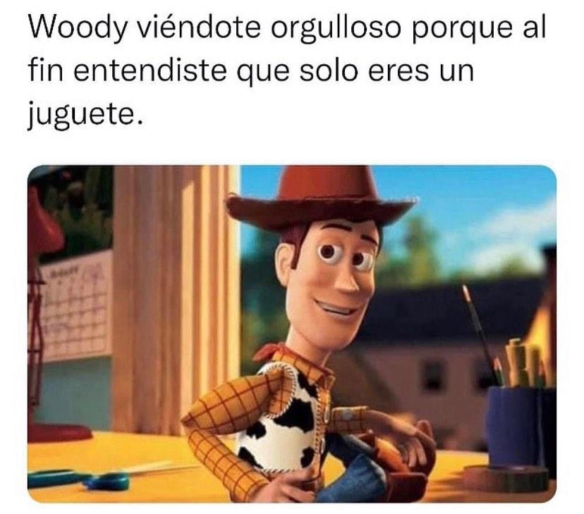 El Woody viéndote orgulloso porque al fin entendiste que solo eres un juguete.