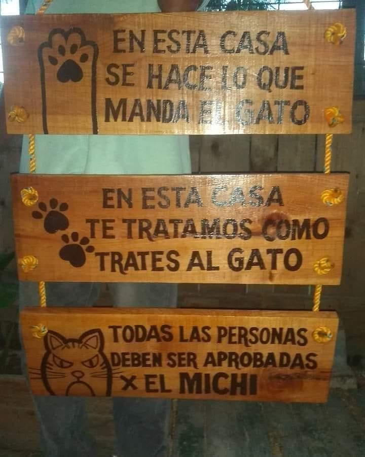 En esta casa se hace lo que manda el gato. En esta casa te tratamos como trates al gato. Todas las personas deben ser aprobadas x el Michi.