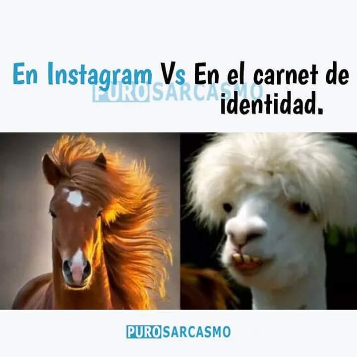 En Instagram. // En el carnet de identidad.