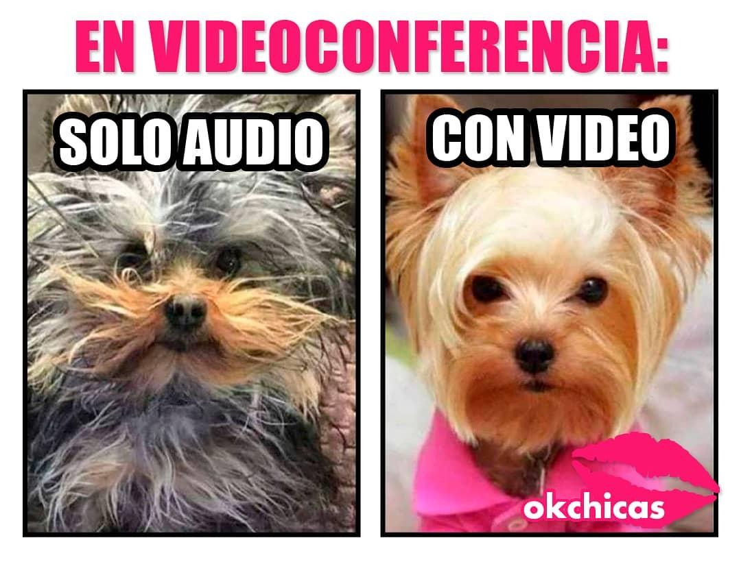 En videoconferencia: Solo audio. Con video.