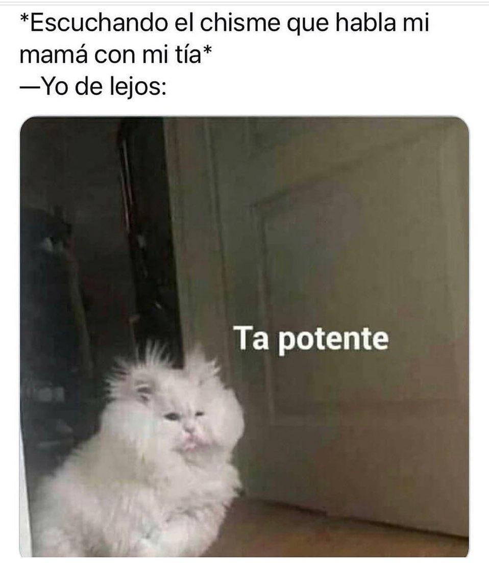 *Escuchando el chisme que habla mi mamá con mi tía*   Yo de lejos: Ta potente.