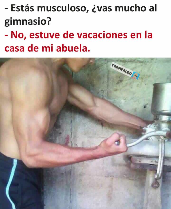 - Estás musculoso, ¿vas mucho al gimnasio?  - No, estuve de vacaciones en la casa de mi abuela.