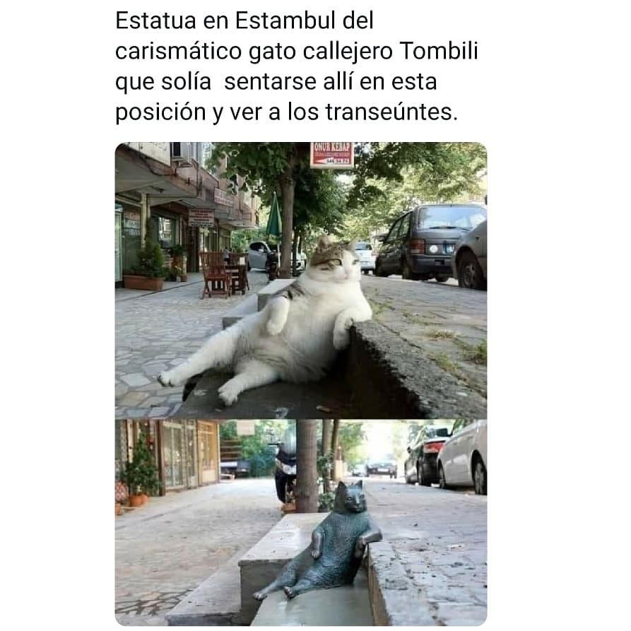 Estatua en Estambul del carismático gato callejero Tombili que solía sentarse allí en esta posición y ver a los transeúntes.