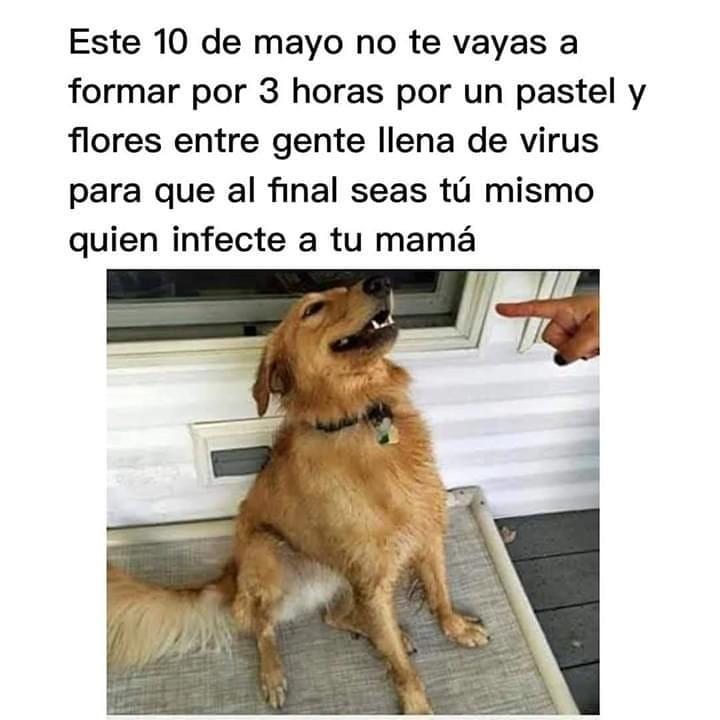 Este 10 de mayo no te vayas a formar por 3 horas por un pastel y flores entre gente llena de virus para que al final seas tú mismo quien infecte a tu mamá.