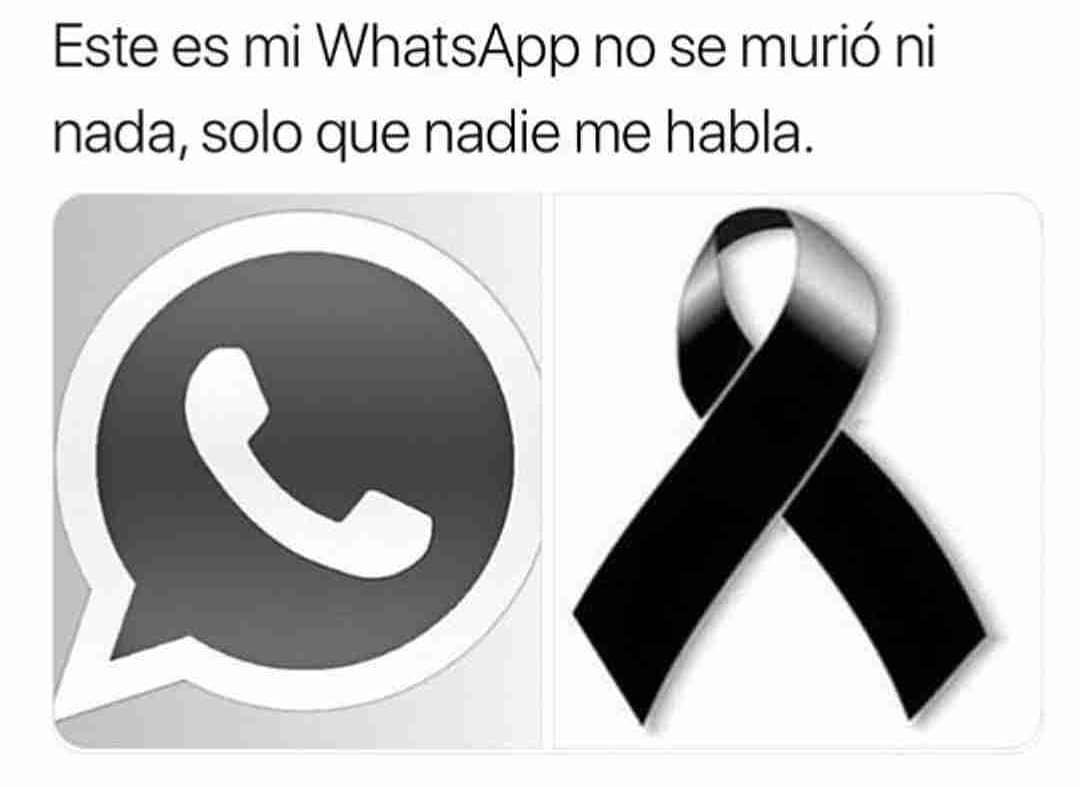 Este es mi WhatsApp no se murió ni nada, solo que nadie me habla.