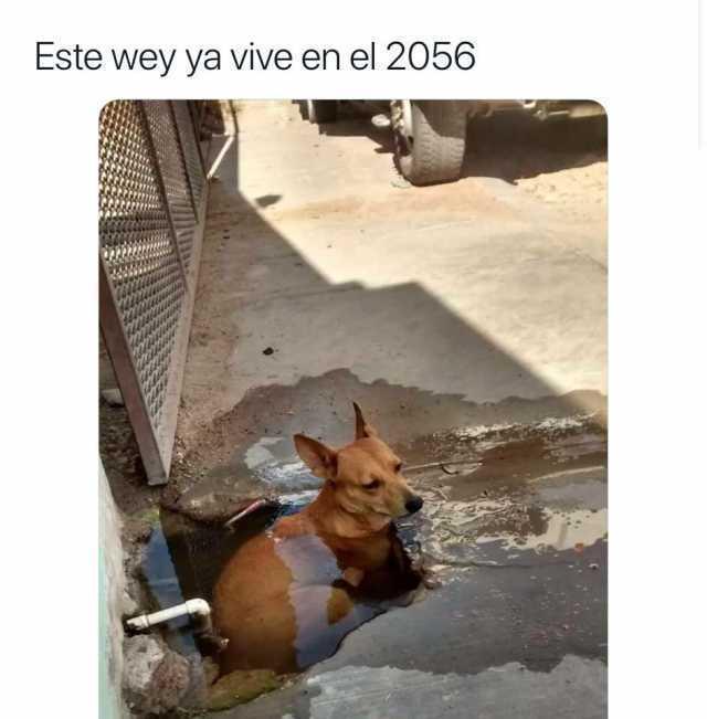 Este wey ya vive en el 2056.