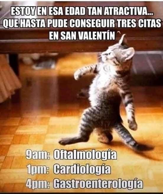 Estoy en esa edad tan atractiva... Que hasta pude conseguir tres citas en San Valentín.  9am: Oftalmología.  1pm: Cardiología.  4pm: Gastroenterología.