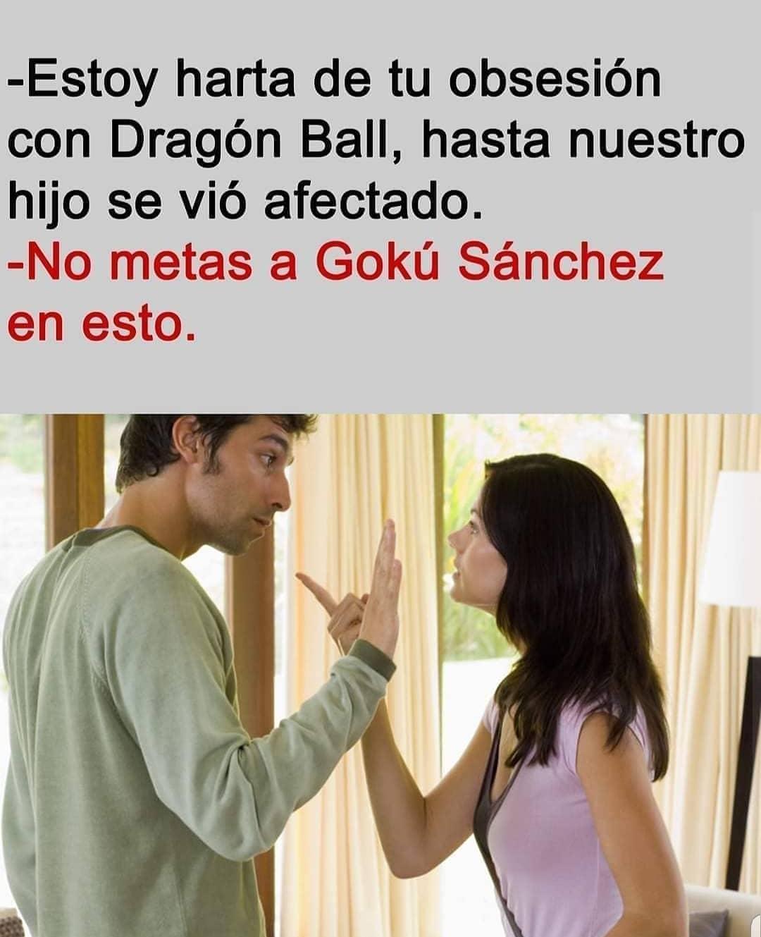 Estoy harta de tu obsesión con Dragón Ball, hasta nuestro hijo se vio afectado.  No metas a Gokú Sánchez en esto.