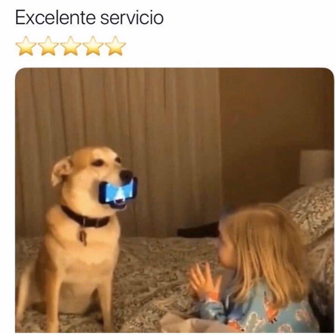 Excelente servicio.