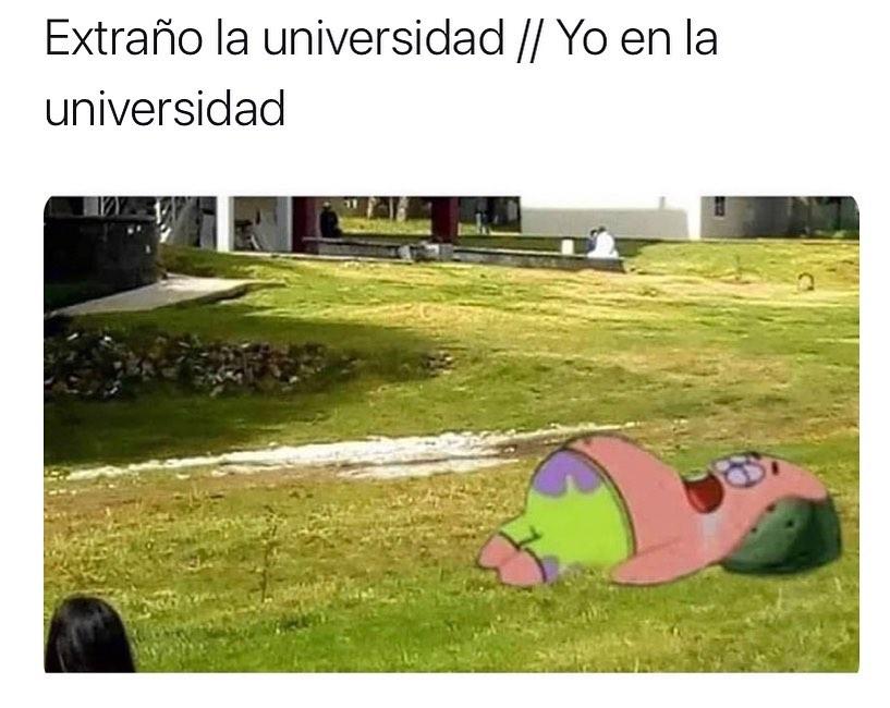 Extraño la universidad. // Yo en la universidad.
