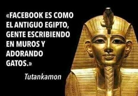 """""""Facebook es como el antiguo Egipto, gente escribiendo en muros y adorando gatos."""" Tutankamon."""