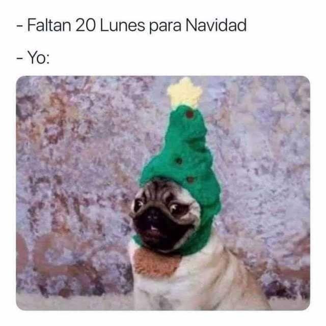 - Faltan 20 Lunes para Navidad.  - Yo: