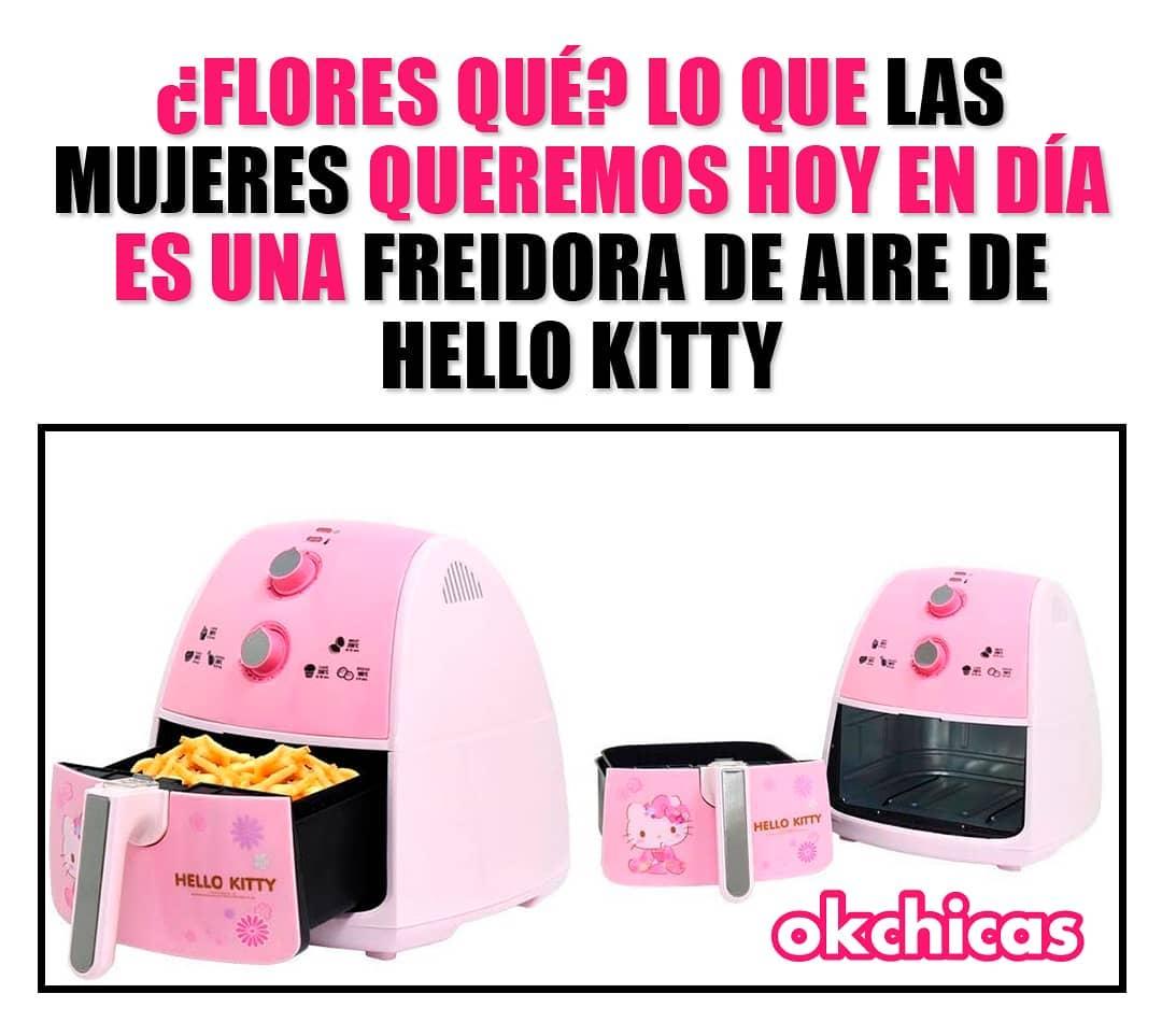 ¿Flores qué? Lo que las mujeres queremos hoy en día es una freidora de aire de hello kitty.