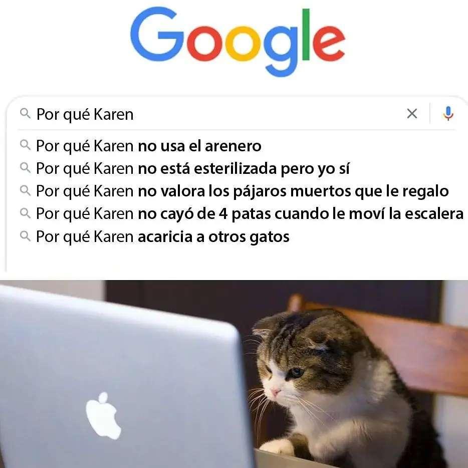Google Por qué Karen... Por qué Karen no usa el arenero. Por qué Karen no está esterilizada, pero yo sí. Por qué Karen no valora los pájaros muertos que le regalo. Por qué Karen no cayó de 4 patas cuando le moví la escalera. Por qué Karen acaricia a otros gatos.