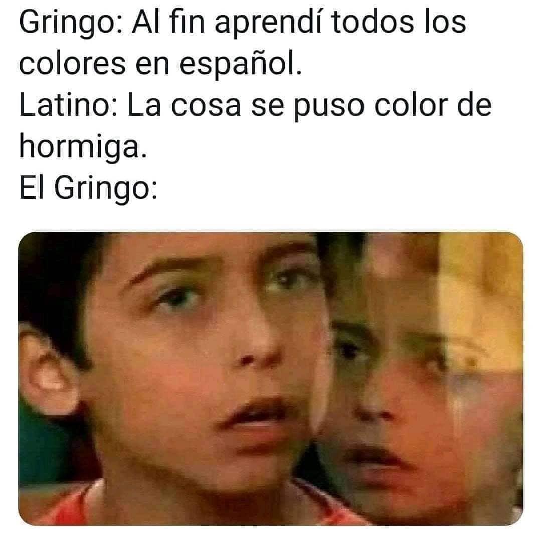 Gringo: Al fin aprendí todos los colores en español.  Latino: La cosa se puso color de hormiga.  El Gringo: