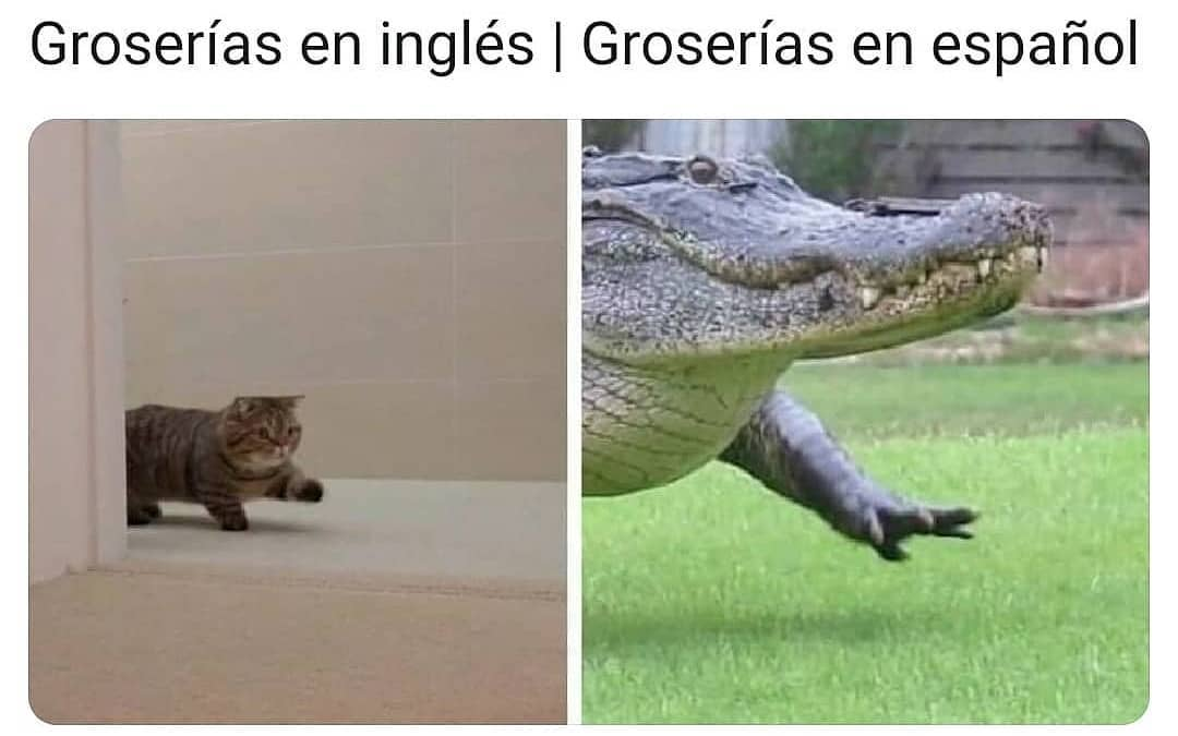 Groserías en inglés. / Groserías en español.