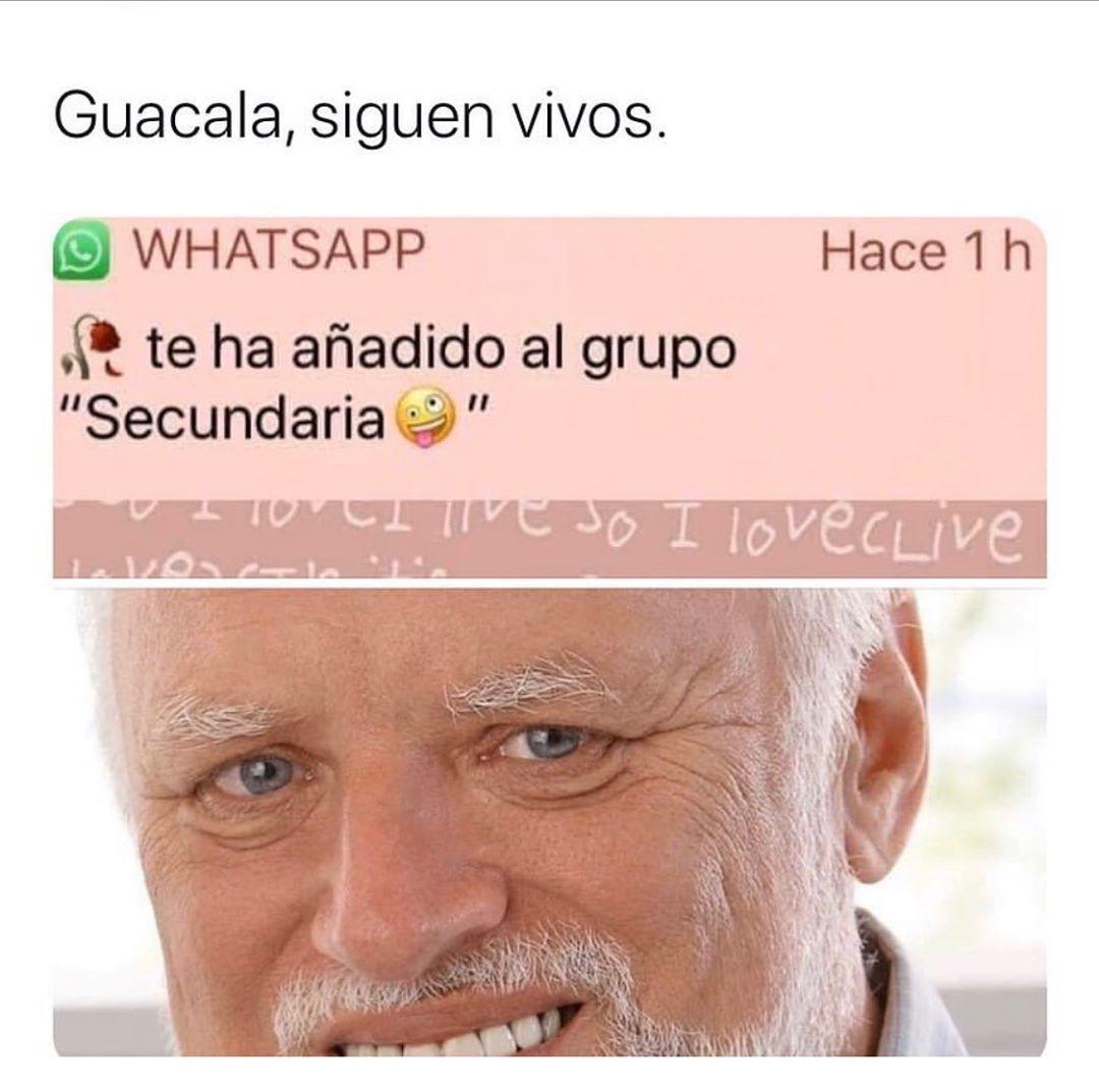 "Guacala, siguen vivos. Te ha añadido al grupo ""Secundaria""."