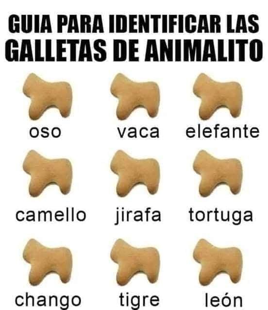 Guía para identificar las galletas de animalitos.  Oso, vaca, elefante, camello, jirafa, tortuga, chango, tigre, león.