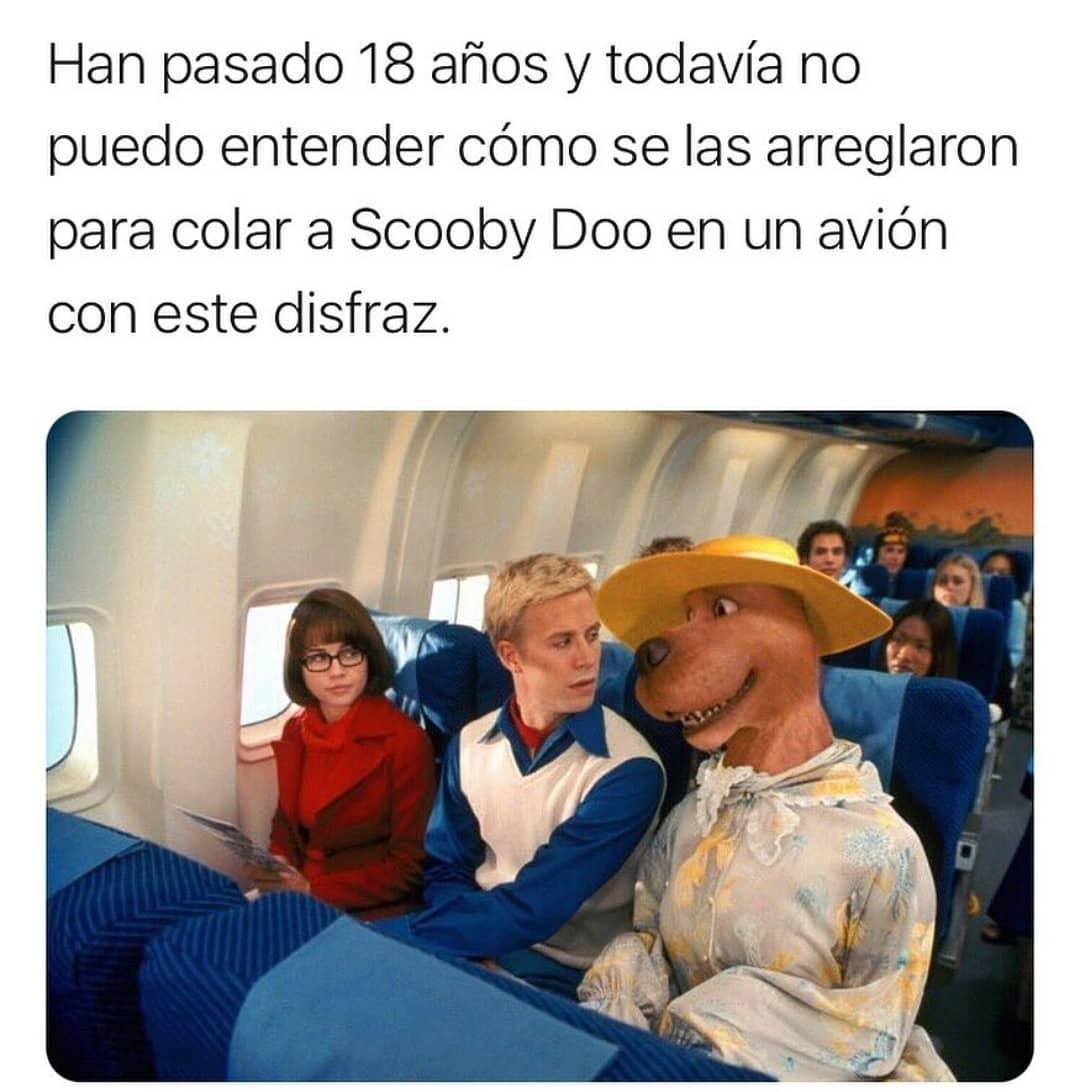 Han pasado 18 años y todavía no puedo entender cómo se las arreglaron para colar a Scooby Doo en un avión con este disfraz.