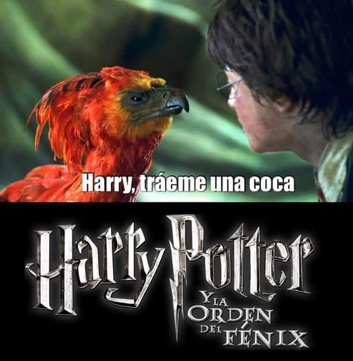 Harry, tráeme una coca. Harry Potter y la orden del fénix.