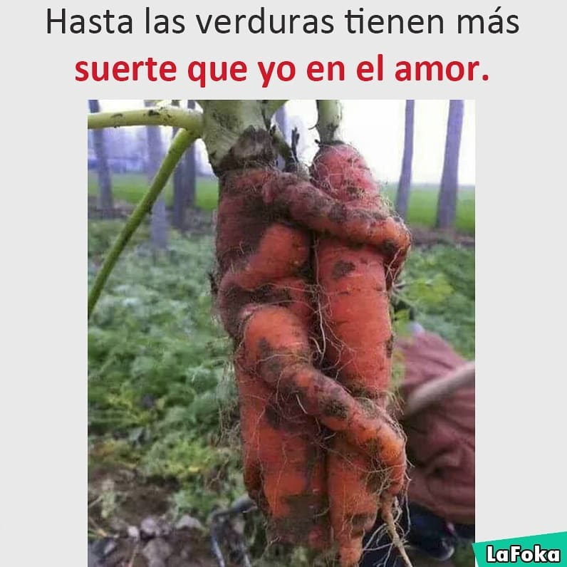 Hasta las verduras tienen más suerte que yo en el amor.